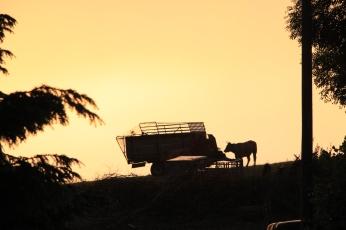 Puesta de sol desde la terraza del Texu